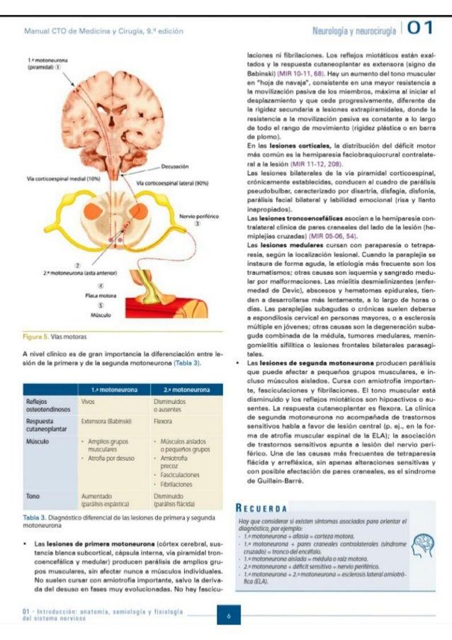 CTO NEUROCIRUGIA PDF