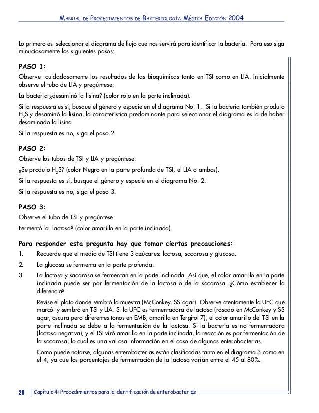 Contemporáneo Anatomía Y Fisiología Humana Manual De Laboratorio 10ª ...