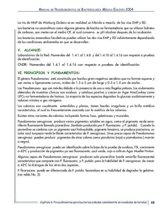 Vistoso Anatomía Y Fisiología Humana Laboratorio 10ª Edición Manual ...