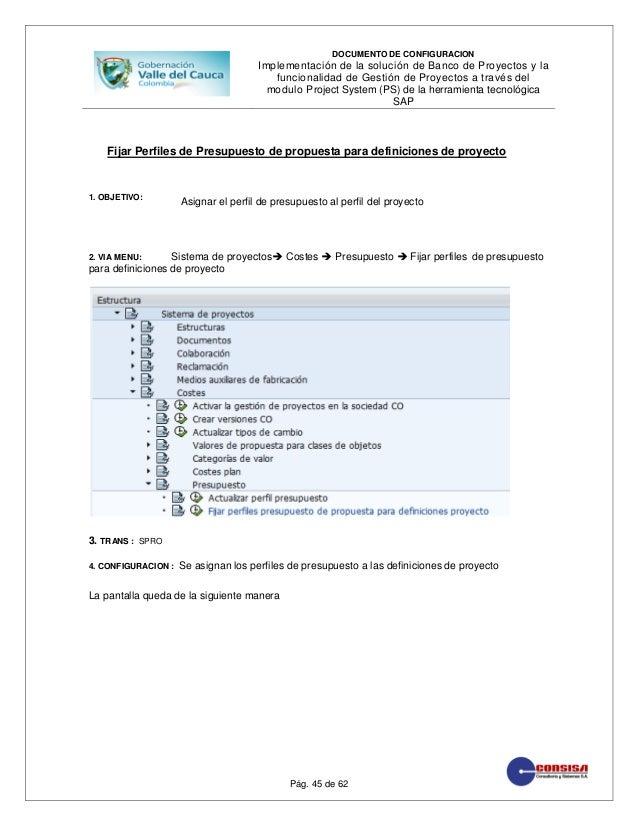Manual De Configuracion Sap Ps