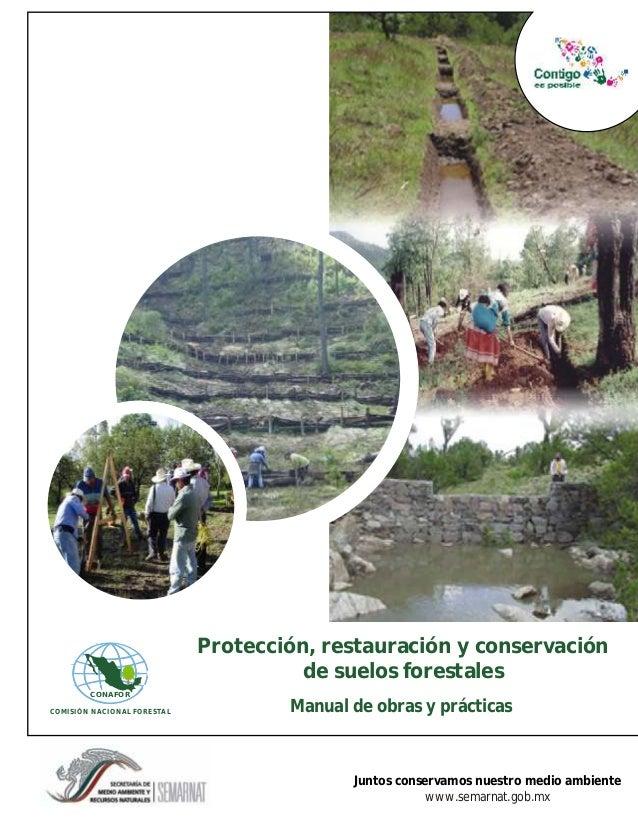 Protección, restauración y conservación                                       de suelos forestales        CONAFORCOMISIÓN ...