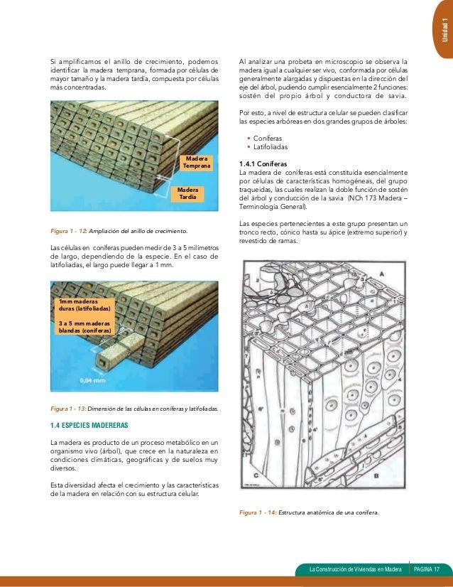 Manual de construcción de viviendas en madera