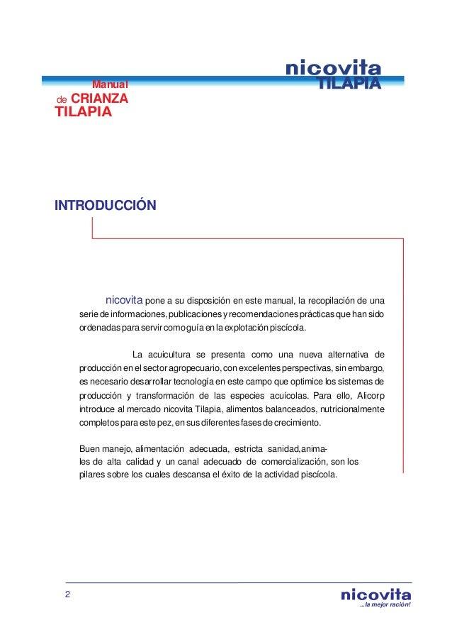 Manual de crianza de tilapia for Manual para criar tilapias
