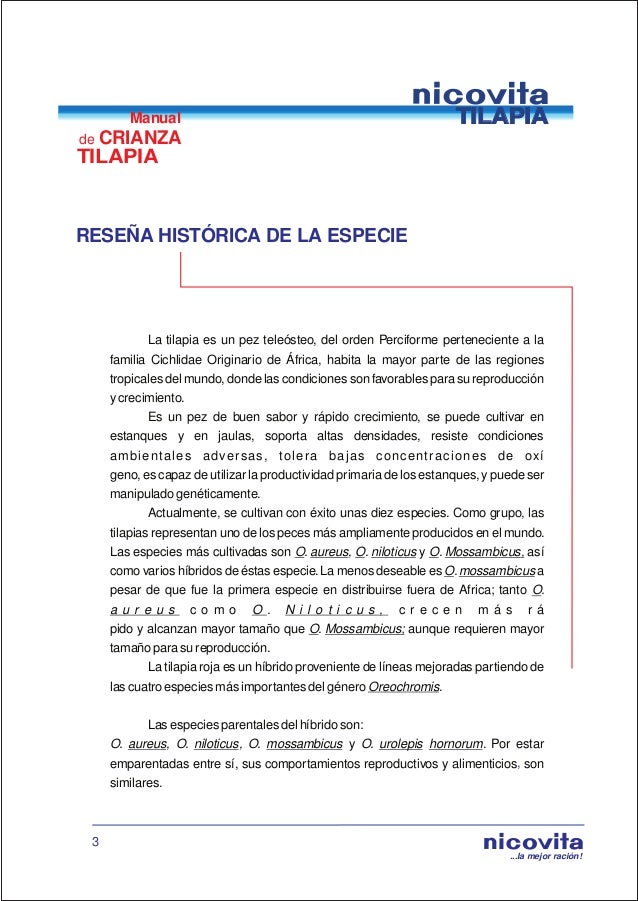 Manual de crianza de tilapia for Como cultivar tilapia en estanques