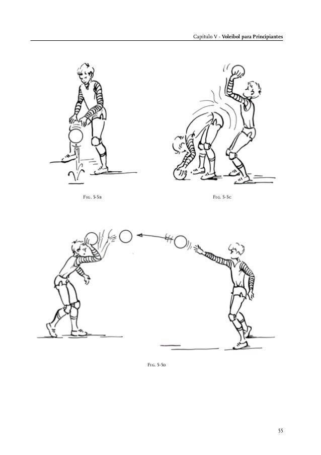 Manual de entrenador nivel 1 FIVB (español)