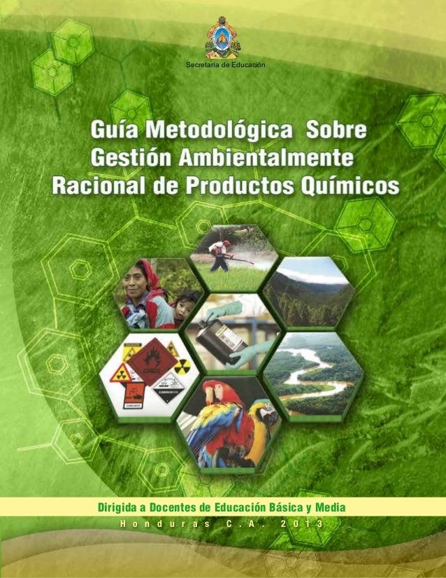 Guía Metodológica Sobre Gestión Ambientalmente Racional de Productos Químicos Dirigida a Docentes de Educación Básica y Me...