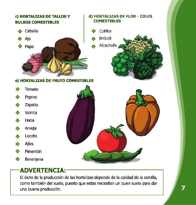 Manual de hortalizas for Plantas hortalizas ejemplos