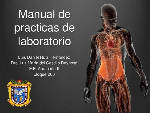 Anatomia de tórax, abdomen, pelvis y periné (Manual de laboratorio)