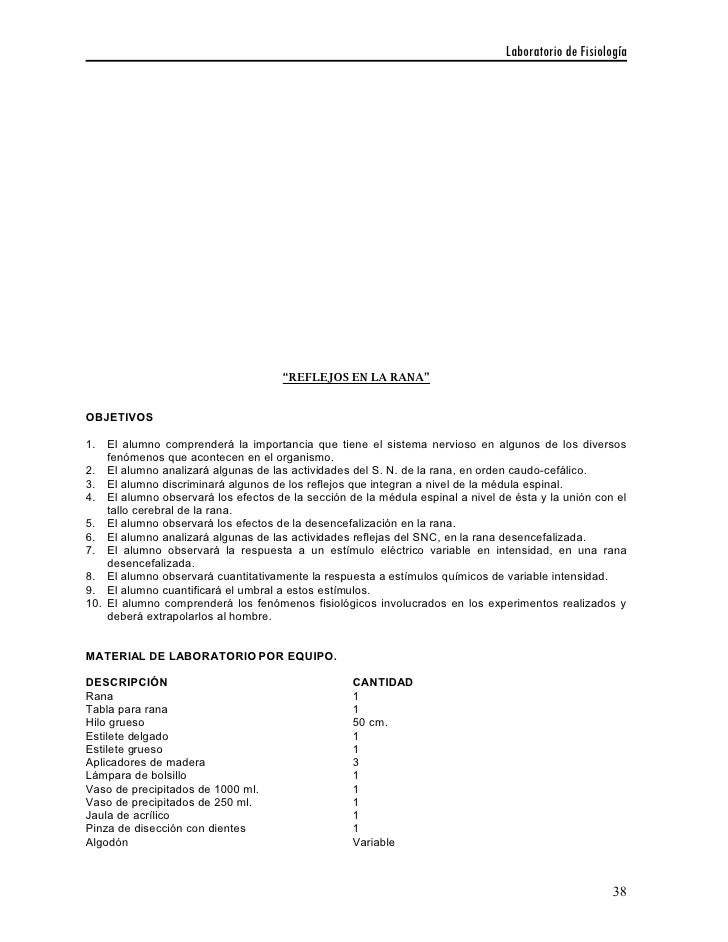 Único La Hoja De Trabajo De Disección Respuestas Rana Fotos - hojas ...