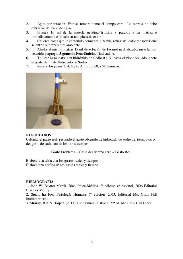 Increíble Anatomía Humana Y Manual De Laboratorio De Fisiología ...