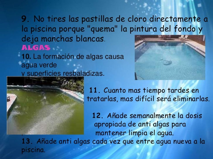 Manual de la piscina for Polvo en la piscina