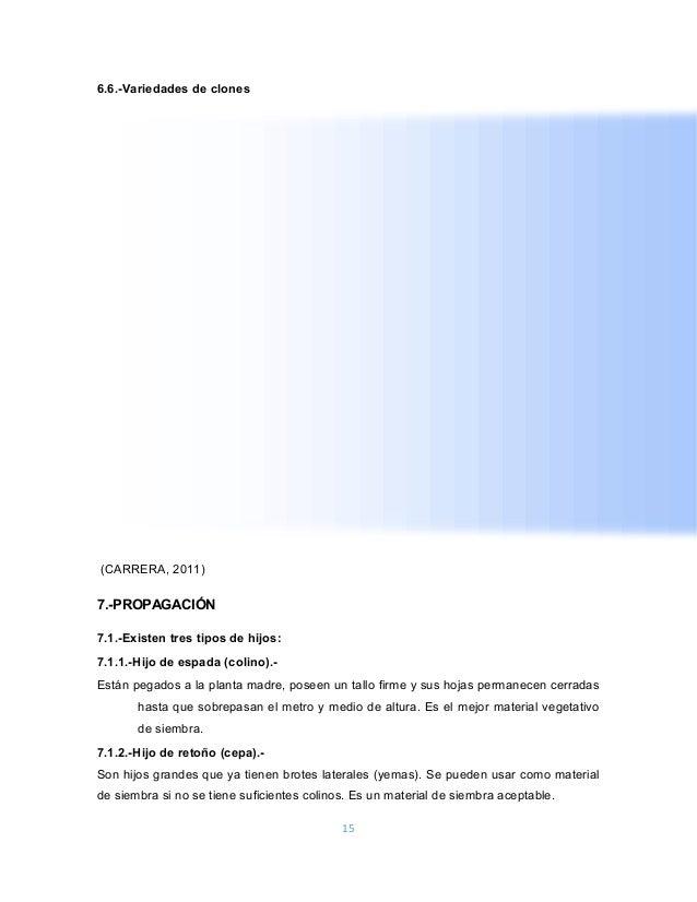Manual Del Sistema Valery Ortiz