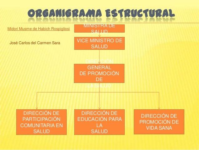 Organizaci n y funciones minsa peru for Ministerio de salud peru
