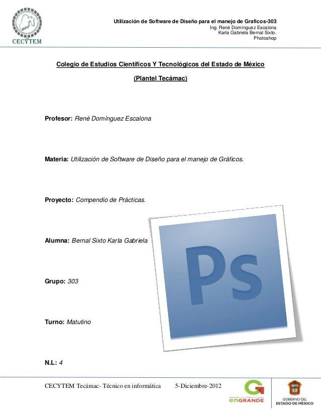Utilización de Software de Diseño para el manejo de Graficos-303                                                          ...