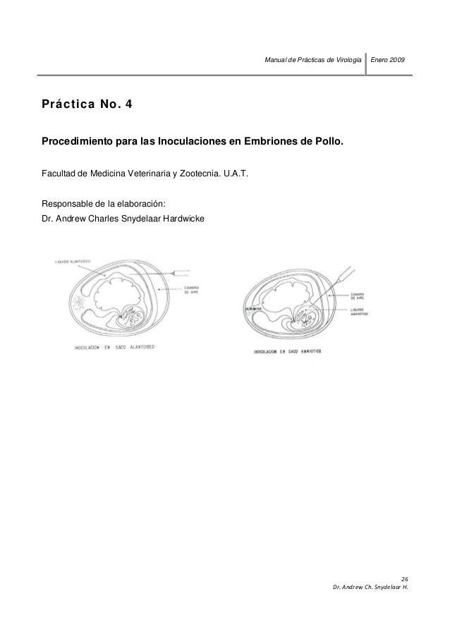 Manual de practicas de virologia