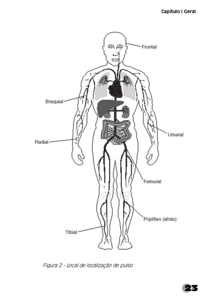 Manual de Primeiros SocorrosRespiração       A respiração é uma das funções essenciais à vida. É através dela queo corpo p...