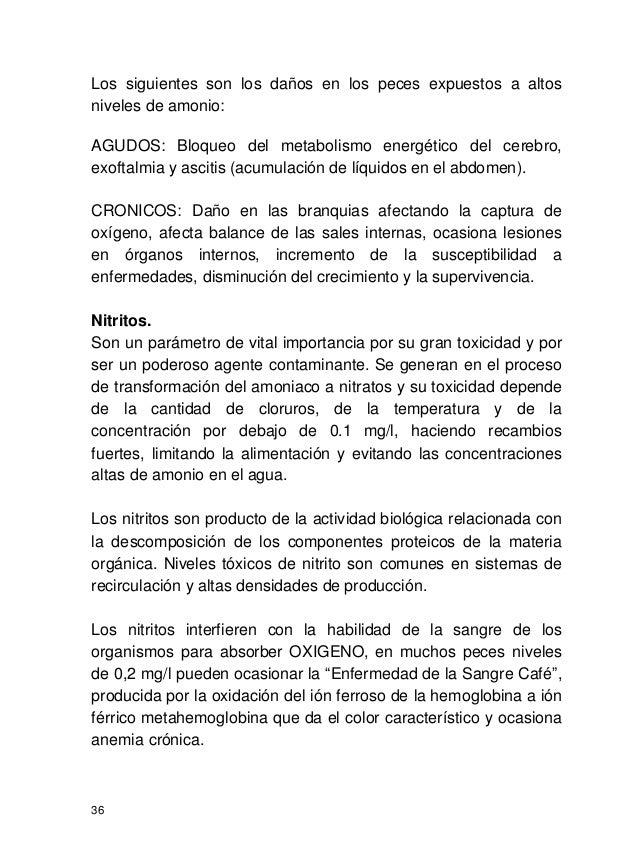 manual de producci n de tilapia