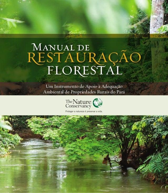 Um Instrumento de Apoio à Adequação Ambiental de Propriedades Rurais do Pará