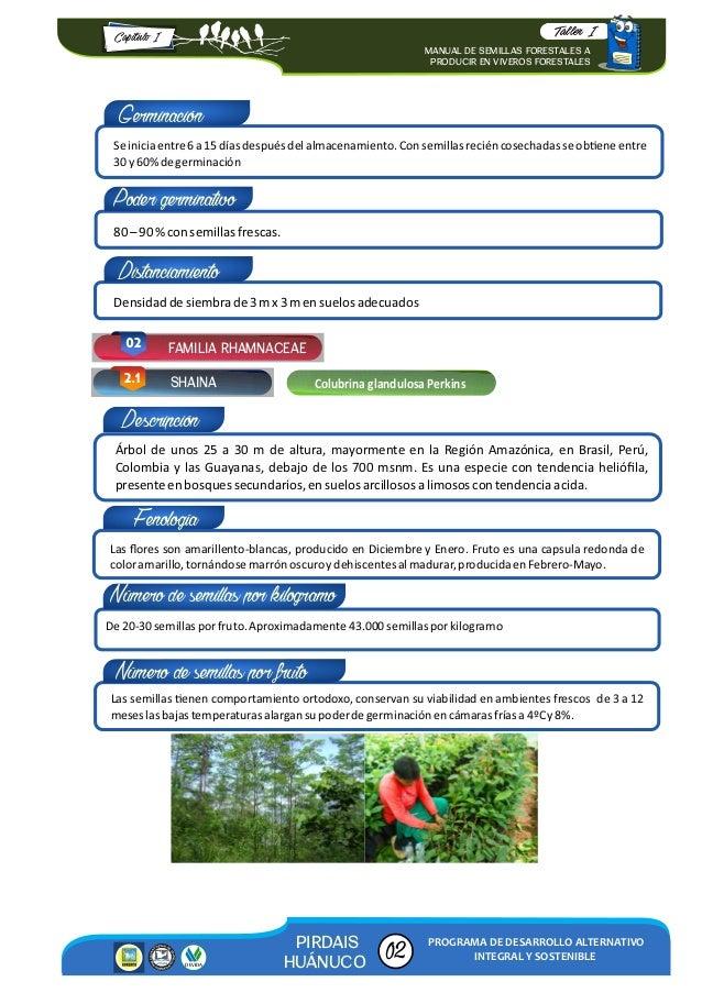Manual de semillas forestales a producir en viveros for Viveros forestales en colombia
