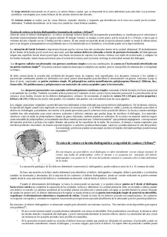 Manual de sutura en Medicina Veterinaria