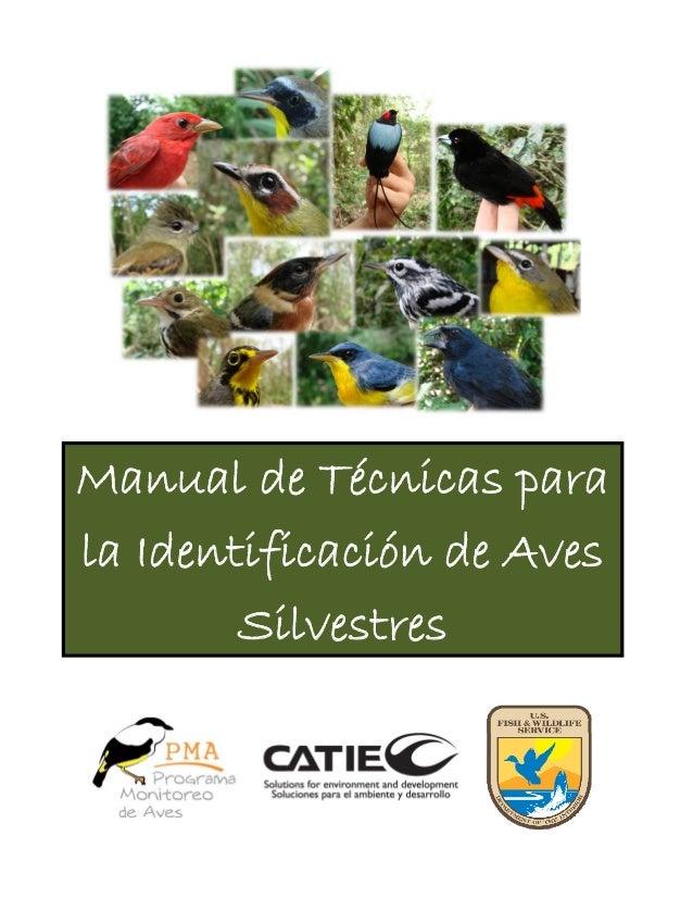 Manual de Técnicas para la Identificación de Aves Silvestres
