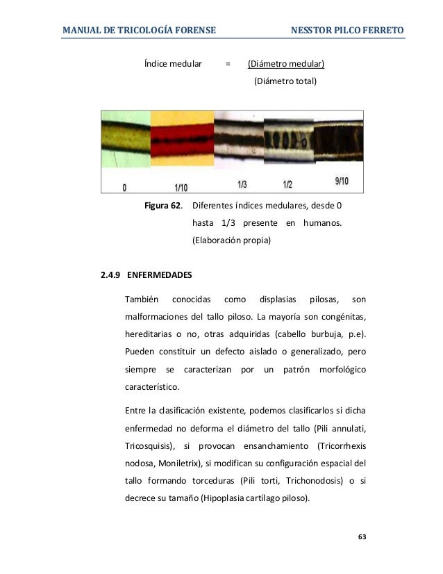 Manual de tricologia forense for Koch 63 od manual
