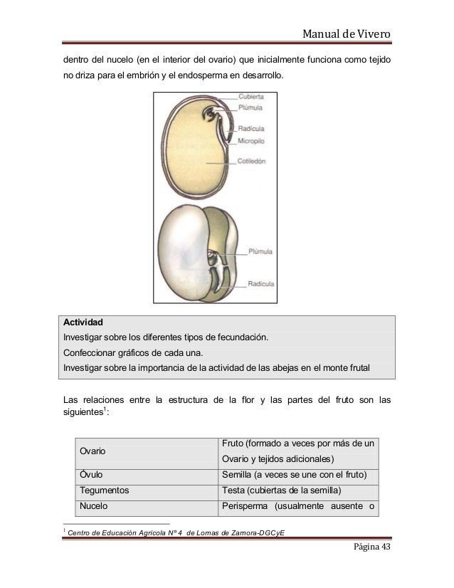 Manual de vivero for Importancia de un vivero