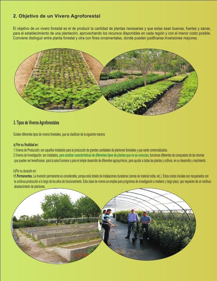 Manual de viveros biohuertos for Plantas que hay en un vivero