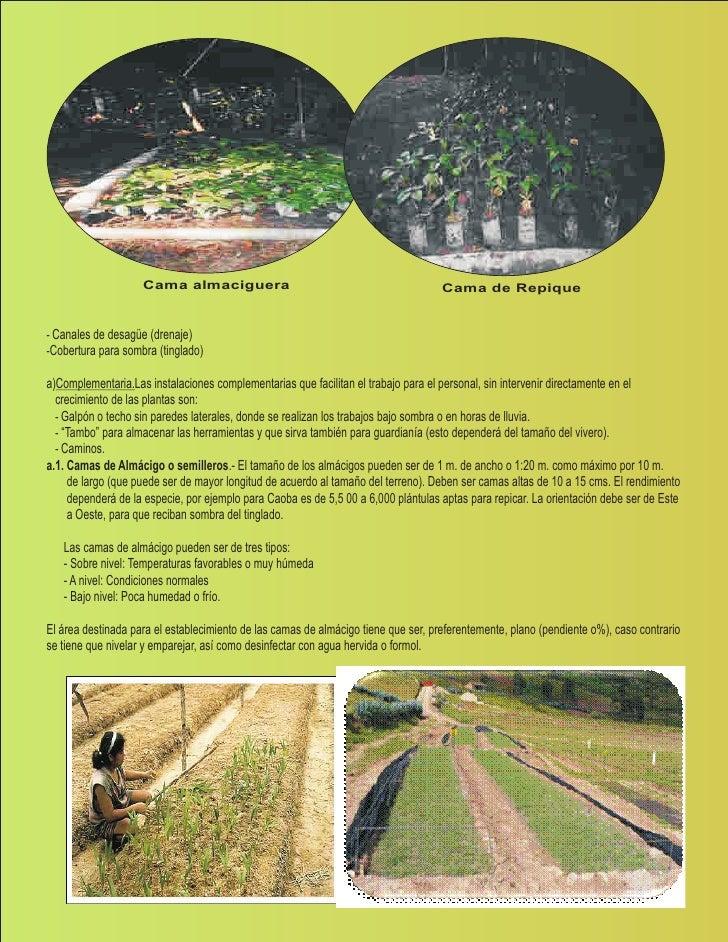 Manual de viveros biohuertos for Preparacion de sustrato para viveros forestales