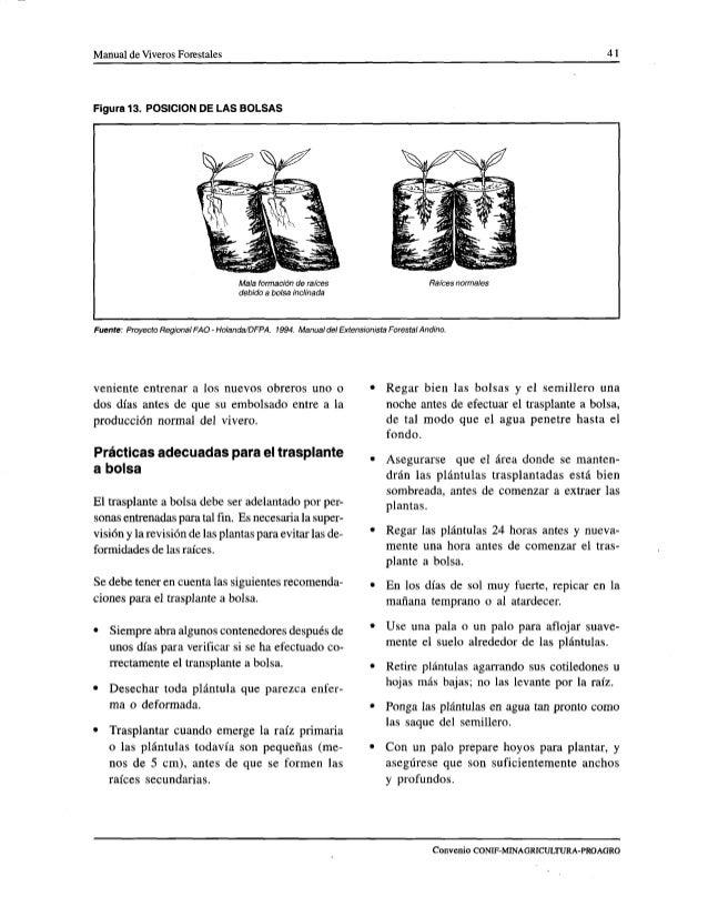 Manual de viveros forestales ica for Manejo de viveros forestales