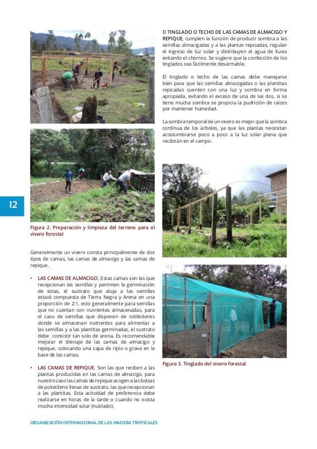 Manual de viveros forestales peru for Organizacion de viveros