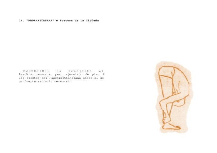 """15. """"YOGA-MUDRA"""" o Símbolo del Yoga     EJECUCION: Siéntese en Padmasana. Haga una inspiración completa. Ponga los brazos ..."""