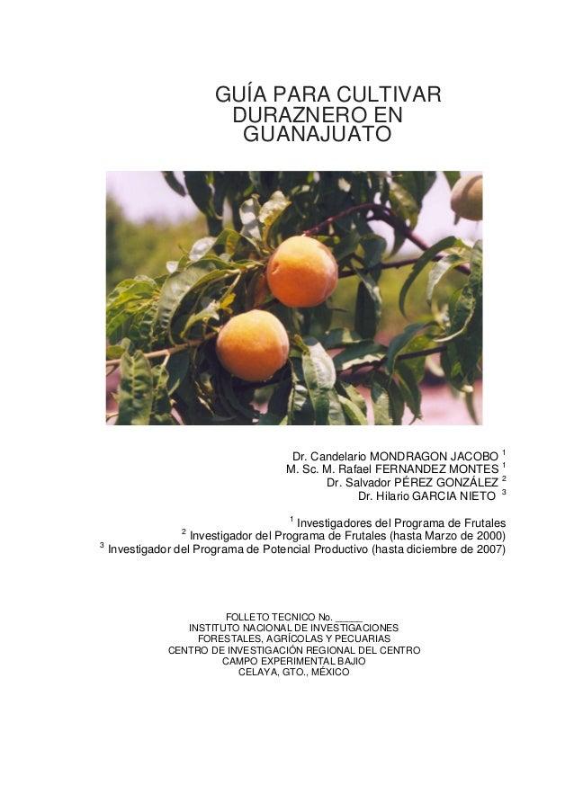 GUÍA PARA CULTIVAR DURAZNERO EN GUANAJUATO Dr. Candelario MONDRAGON JACOBO 1 M. Sc. M. Rafael FERNANDEZ MONTES 1 Dr. Salva...
