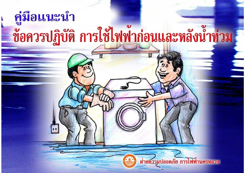 Electric - Flood Manual
