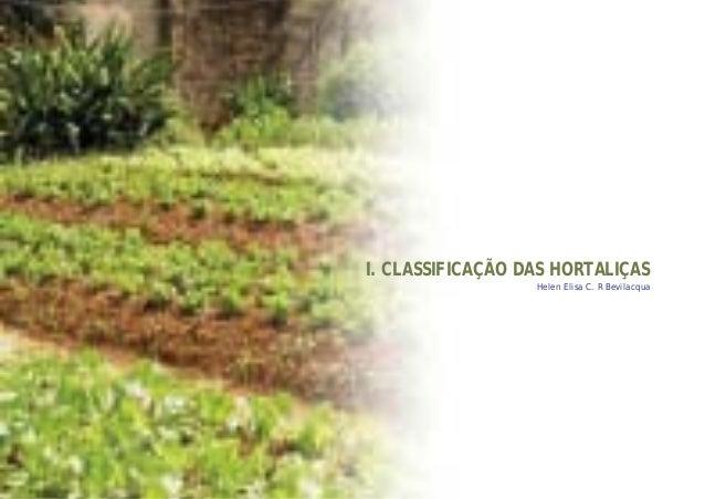 I. CLASSIFICAÇÃO DAS HORTALIÇASHelen Elisa C. R Bevilacqua