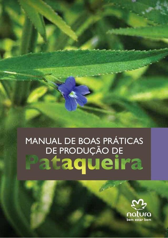 MANUAL DE BOAS PRÁTICAS DE PRODUÇÃO DE