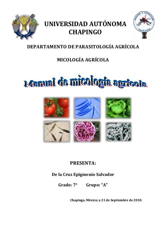 UNIVERSIDAD AUTÓNOMA           CHAPINGODEPARTAMENTO DE PARASITOLOGÍA AGRÍCOLA          MICOLOGÍA AGRÍCOLA                P...