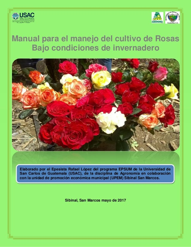 Manual completo para cultivar rosas. Incluye pdf -.