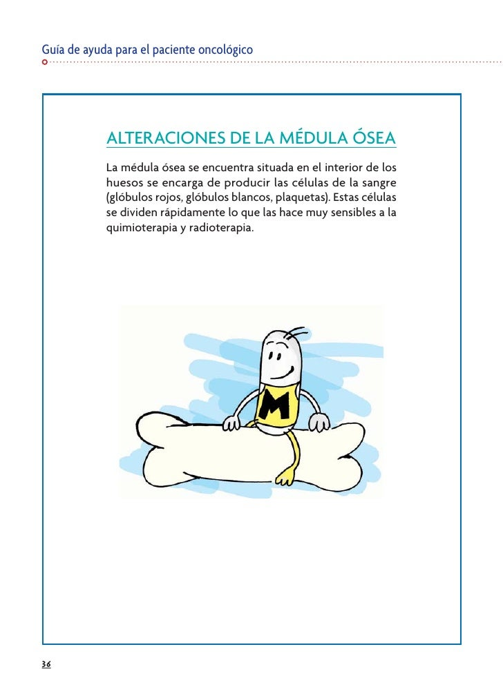 Guía de ayuda para el paciente oncológico                 ALTERACIONES DE LA MÉDULA ÓSEA             La médula ósea se enc...