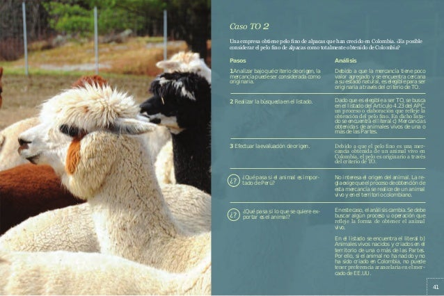 9484a8641d24c Manual práctico para el sector textil - confecciones