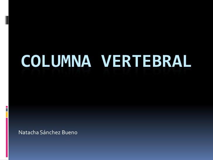 COLUMNA VERTEBRAL<br />Natacha Sánchez Bueno<br />