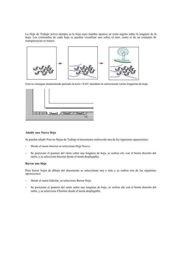 Componentes de la Hoja de TrabajoUna hoja de trabajo tiene dos componentes. El borde de la hoja (A) muestra la orientación...