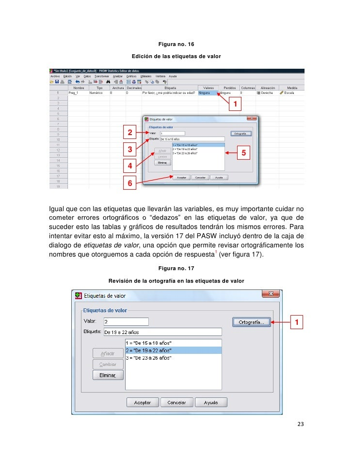 spss manual espanol product user guide instruction u2022 rh testdpc co SPSS 20 User Guide SPSS Statistics