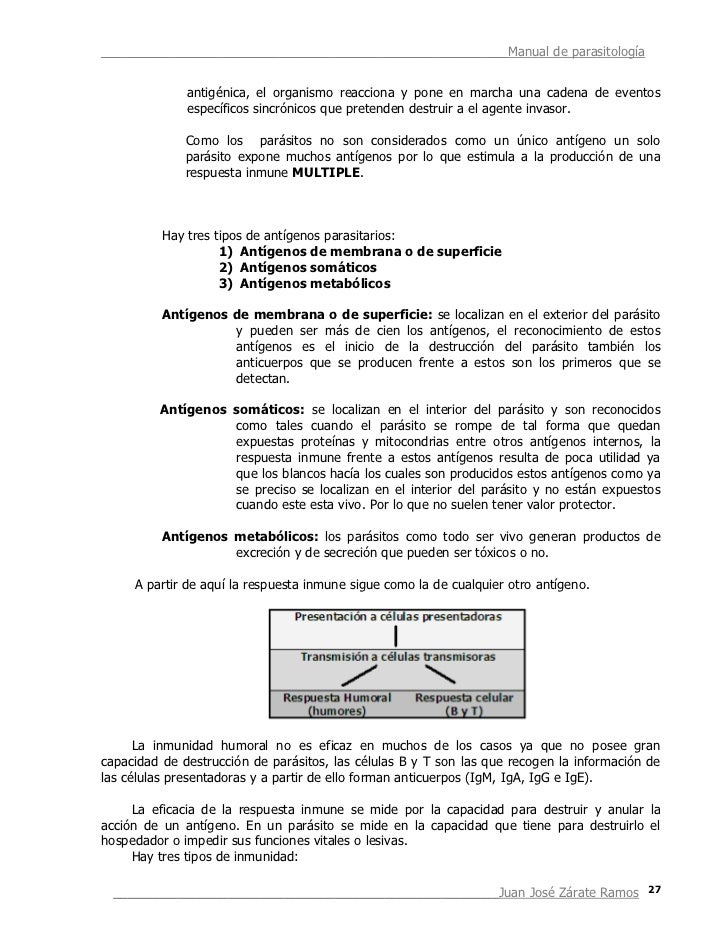 Manual total parasilotolgia for Manual de funciones de un restaurante pdf