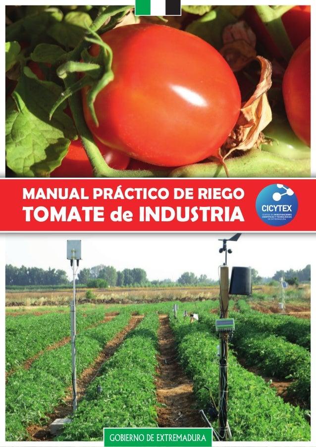MANUAL PRÁCTICO DE RIEGO TOMATE de INDUSTRIA