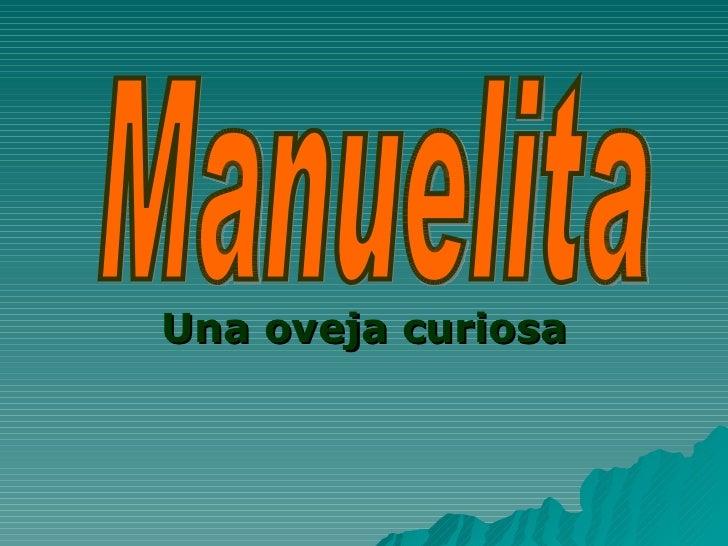 Una oveja curiosa Manuelita