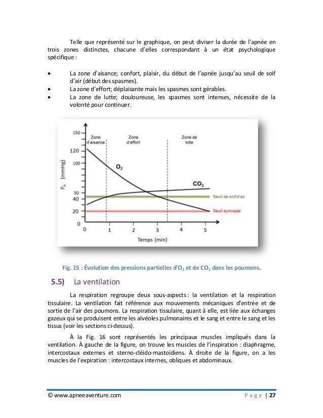 © www.apneeaventure.com P a g e   27 Telle que représenté sur le graphique, on peut diviser la durée de l'apnée en trois z...