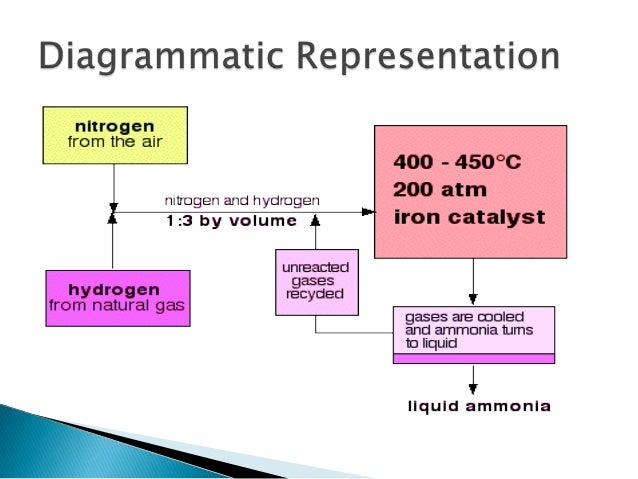 the production of ammonia and the haber process Best answer: the haber process, also called the haber–bosch process, is the nitrogen fixation reaction of nitrogen and hydrogen, over an iron substrate, to produce ammonia[1][2][3] the haber process is important because ammonia is difficult to produce on an industrial scale.