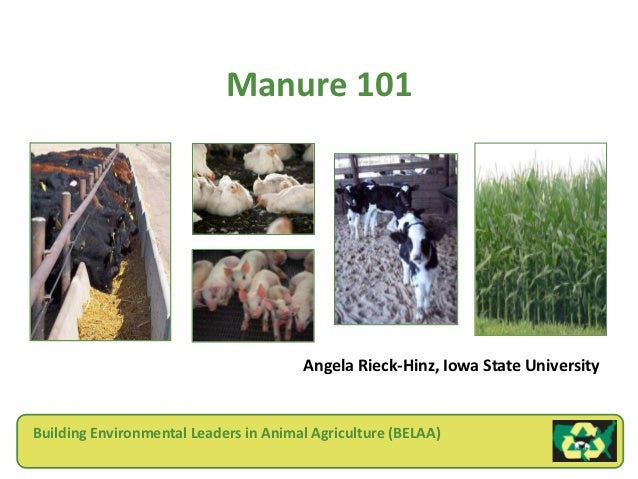 Manure 101                                       Angela Rieck-Hinz, Iowa State UniversityBuilding Environmental Leaders in...