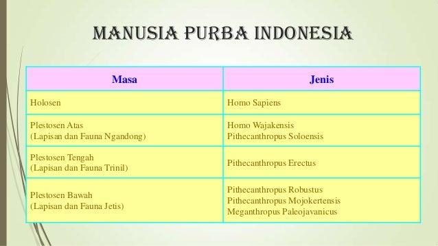 Manusiapurbadiindonesia 130305050551 Phpapp02